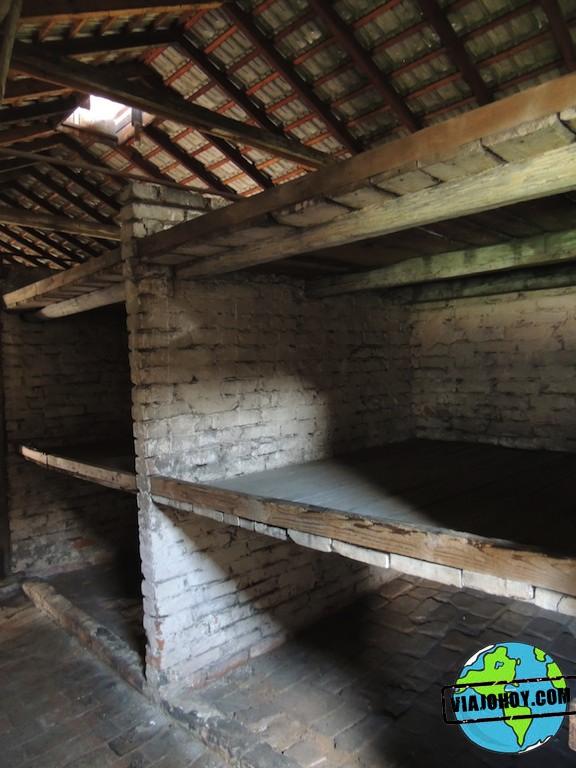 Visita-Auschwitz-viajohoy267
